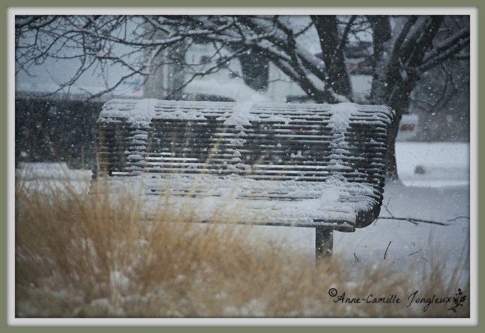 Snow covered park bench.  Indianapolis Museum of Art*
