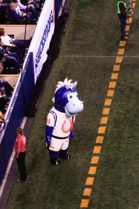 ColtsPackers Mascot 5