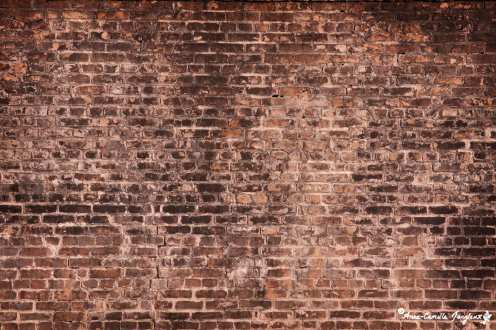 A Wall -- a literal interpretation of this week's theme