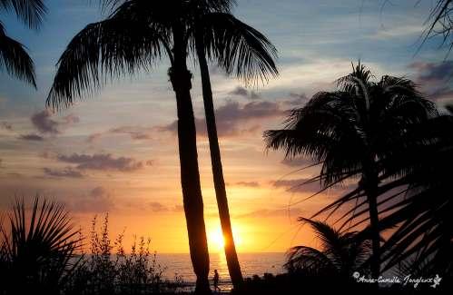 SunsetStroll