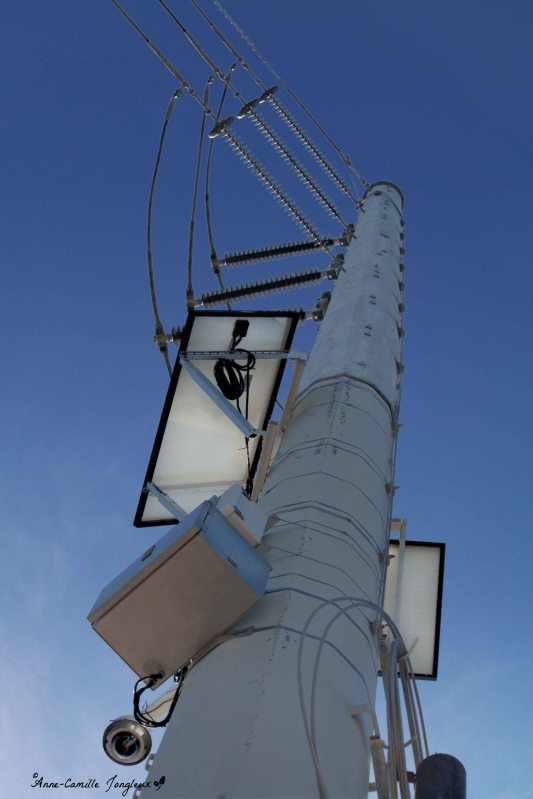 Looking Up, Utility Pole, Architectural,