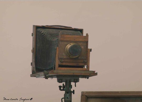 BrancusisCamera