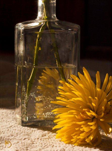 Bloom, kk_cherish, Kim Klassen, Texture Tuesday