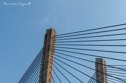 Martinus Nihjoff Bridge, Zaltbummel, The Netherlands