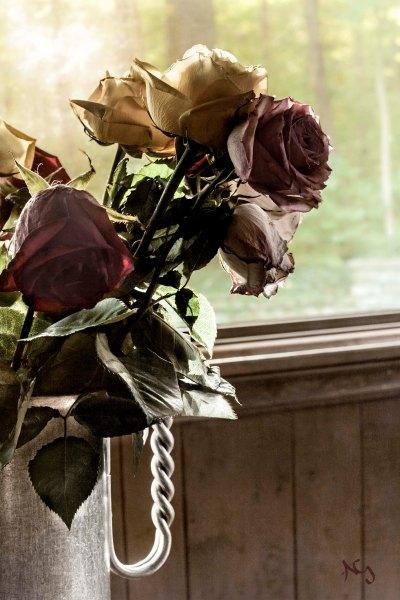 Wabi-Sabi Roses
